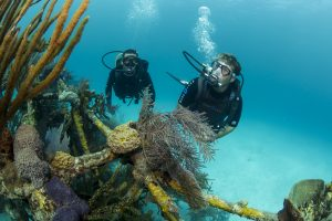 Aqualung catalog shoot, Stuart Cove's Dive Bahamas